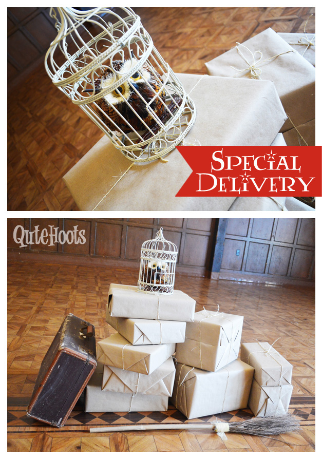 harry potter packages